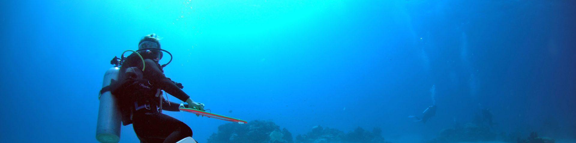 M's Diving Adventure